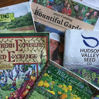 It's Seed Catalog Season!